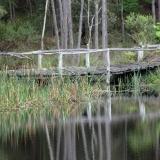 leewhite-bridge-2