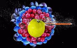 Captur-fruit