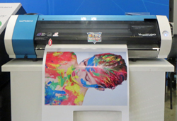 The Roland VersaStudio printer and cutter printin to a self-adhesive vinyl substrate. It delivers a lot of added capability for a sub-$10K asking price and a meagre space requirement.