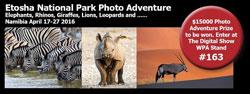 Etosha_National_Park[1]