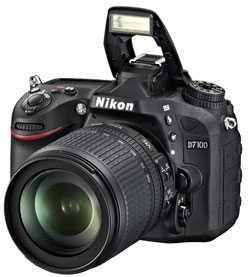 Priceless: The new high-end enthusiast model from Nikon, the D7100, will be available from March.