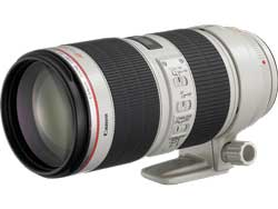 The workhorse 70-200mm f2.8 lens is subject to failure due to the