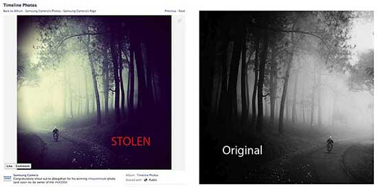 The stolen 'winning entry' (left) and the original from fine art photographer